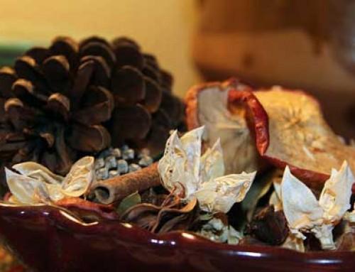 Susz – zdrowa tradycja